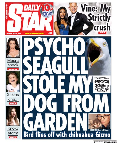 Daily Star Newspaper Front Page (UK) for 22 July 2019