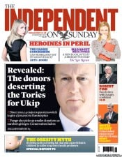 Image result for the independent newspaper headlines 2013